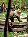 Traditional Honey making in Sichuan, China.jpg