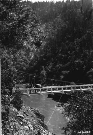 Packhorse - Pack horses on a suspension bridge crossing the Rogue River in Oregon, USA