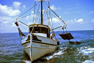 Fishing trawler - This small shrimp trawler uses outriggers, with a forward deckhouse and aft working deck.