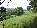 Triangle of land - geograph.org.uk - 430997.jpg