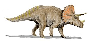 Triceratops horridus, a ceratopsian from the L...