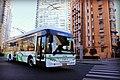 Trolley-bus Line 19 at Woosong Road.jpg