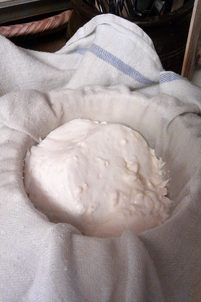 image of cream cheese