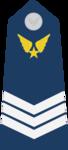 Trung Sĩ Nhất-Airforce 2.png