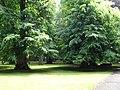 Trzęsacz park, XVIII nr 658124 (4).JPG