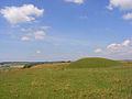 Tumulus, White Sheet Hill - geograph.org.uk - 909706.jpg