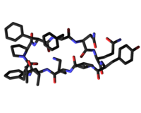 Tyrocidine 3D.png