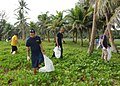 US Navy 110917-N-BT122-446 Sailors pick up trash during a community service event at the War in the Pacific National Historical Park at Asan Beach.jpg