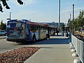 UTA buses at Meadowbrook station (Route 33), Aug 16.jpg