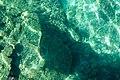 Underwater coral, crystal clear water, Bacuit Bay, El Nido, Palawan, Philippines.jpg