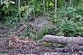 Unterengstringen - neuzeitliche Schanzen 2011-09-06 18-51-32.JPG