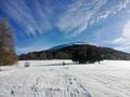 Verso cima Palon, riserva naturale Tre Cime Monte Bondone.png