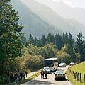 Viehscheid Ramsau 03.jpg