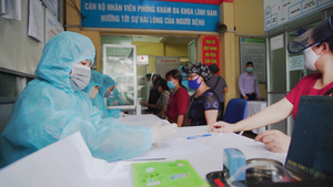 Vietnamese registered for rapid testing (COVID-19).png