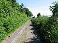View along Lane towards Standardhill Farm - geograph.org.uk - 850400.jpg