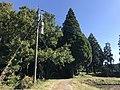 View near Akamizu Station 2.jpg