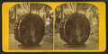 View of a large bass drum, from Robert N. Dennis collection of stereoscopic views.png