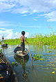 Village boy rowing a boat, Bangladesh.jpg