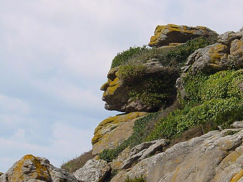 Visage dans un rocher.jpg