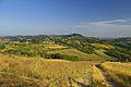 Vista verso Casasco e Montemarzino - panoramio.jpg