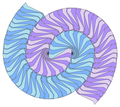 The Voderberg tiling, a spiral, monohedral tiling made of enneagons.