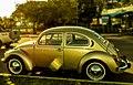 Volkswagen beetle 82.jpg