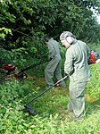 Volunteers help clear garden for local disabled homeowner 120825-F-UA873-040.jpg