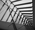 WLANL - Harry -- The Travel -- Marmot - KunstHAL fish-bone architecture.jpg