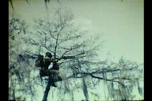 Wakulla Springs & WWII Troop Maneuvers -SILENT-
