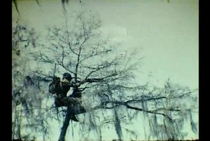 File:Wakulla Springs & WWII Troop Maneuvers -SILENT-.ogv