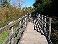 Walkway across wetland below Aberlleiniog Castle - geograph.org.uk - 1541293.jpg