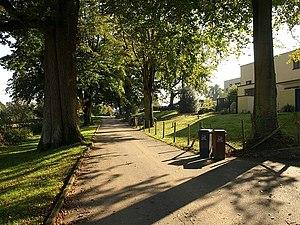 English: Warren Lane, Dartington Another view ...