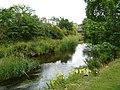 Water of Leith, Stockbridge - geograph.org.uk - 1406121.jpg