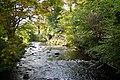 Water of Leith Currie Edinburgh - geograph.org.uk - 749496.jpg