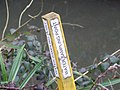 Water sampling point marker - geograph.org.uk - 369564.jpg