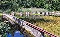 Waterloopbos. Onderzoek afsluiting van zeegaten Deltawerken M995 17.jpg
