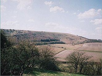 North Wessex Downs - Watership Down, taken from the north-east