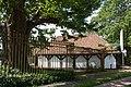 Westerlo Hof van Overwijs met linde 02.jpg