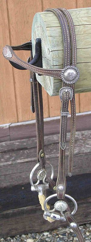Western riding - A western-style bridle with a browband and decorative snaffle bit