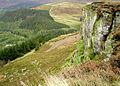 White Hill - geograph.org.uk - 196018.jpg