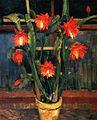 Wilhelm Trübner - Still Life with Cactus (15514734962).jpg