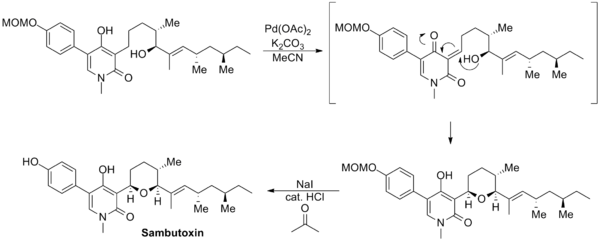 Williams sambutoxin synthesis