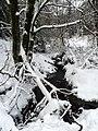 Willingen-Stryck - Winter im Paradies - panoramio (1).jpg