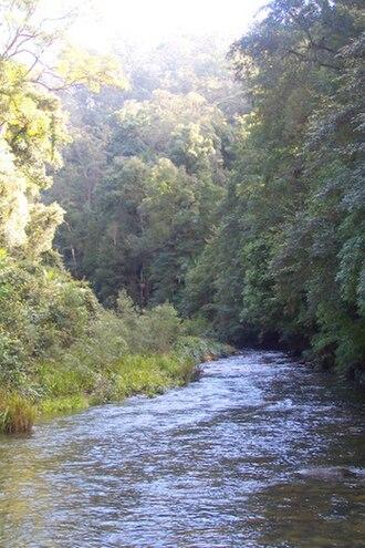 Wilson River (New South Wales) - Wilson River, downstream of Mount Banda Banda
