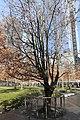 World Trade Centre Memorial (11601309054).jpg