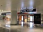 Wuhan Tianhe Airport T3 5.jpg