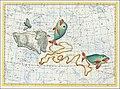 XI. Aris, Piscis Borealis, Piscis Australis, Linum Piscium.jpg