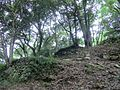 Yamaguchi Kounomine castle 02.JPG