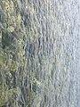 Zakynthos 290 92, Greece - panoramio.jpg