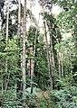 Zhukovskiy, Moscow Oblast, Russia - panoramio (42).jpg